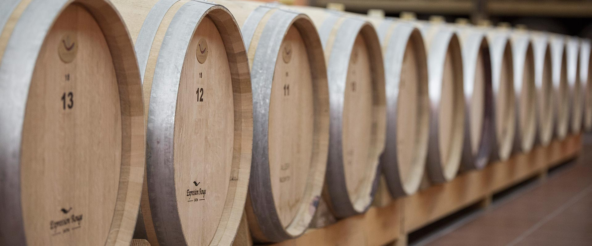 Nestor Winery - Our Winery